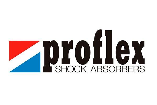proflex-servicios